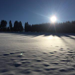 Courir par temps froid