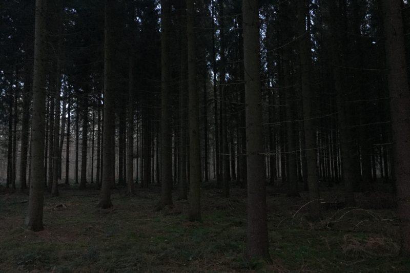 Trail des 3 vallées
