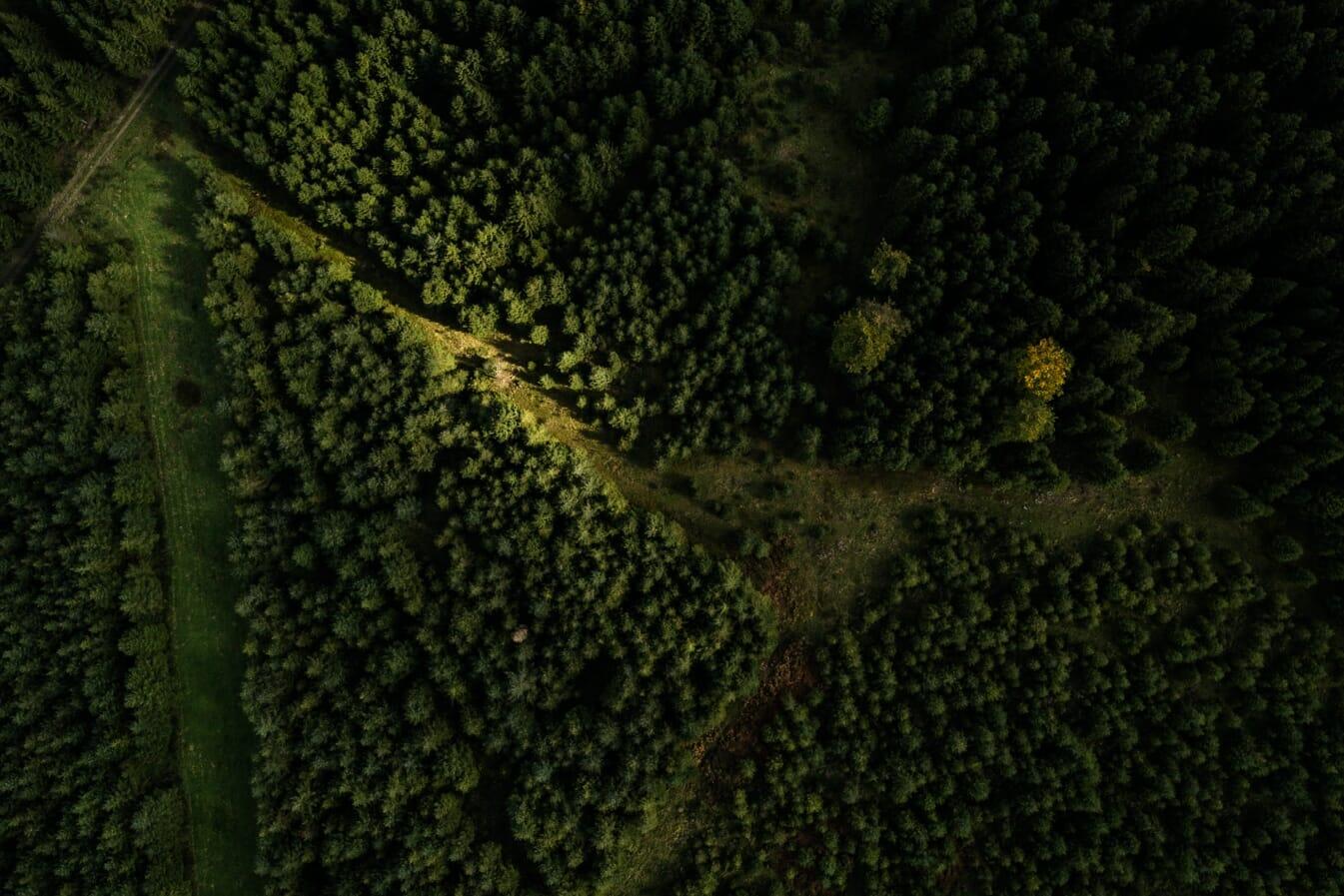 Couleurs de l'automne en Ardenne