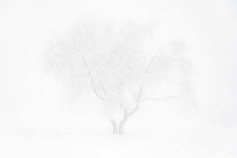 Bivouac hivernal dans les Hautes Fagnes