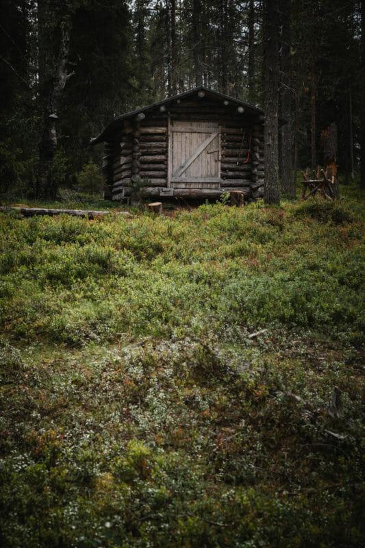 Rando dans le parc national de Riisitunturi en Laponie finlandaise