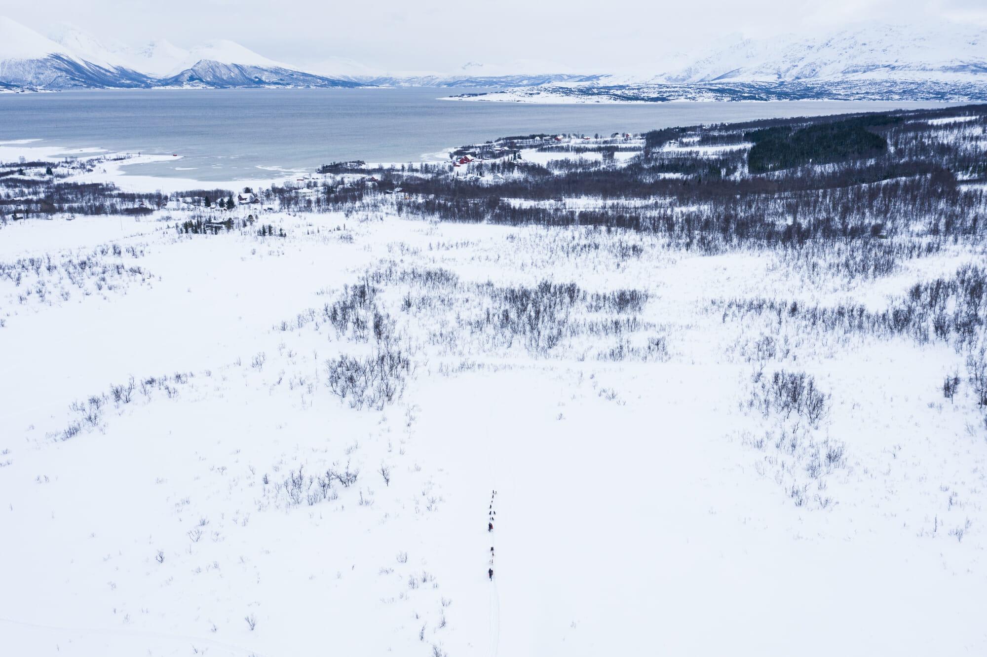 Traineau et paysage enneigé à Tromsø Norvège du Nord