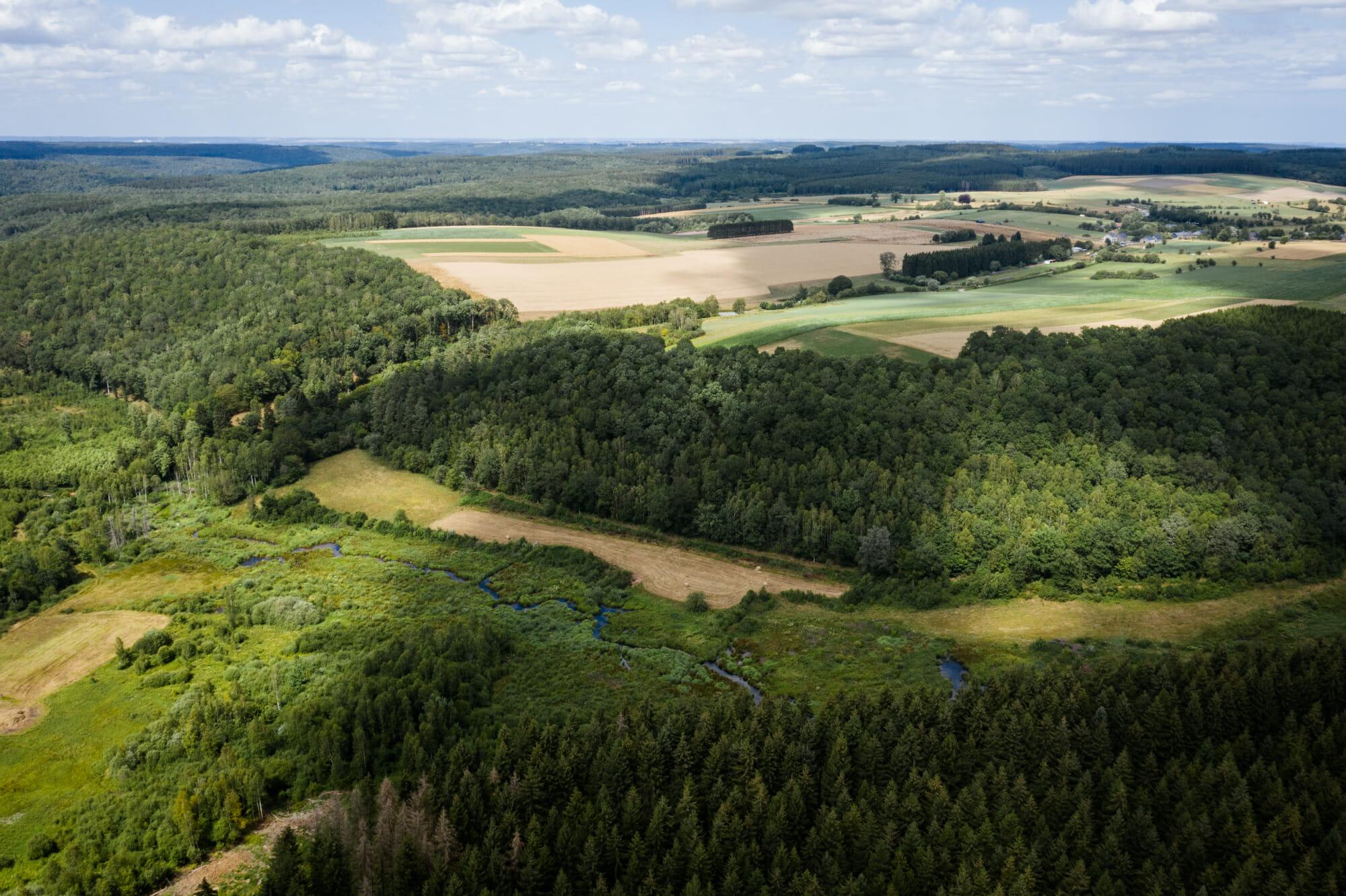 Massif de la Croix Scaille en Ardenne namuroise (en Province de Namur)