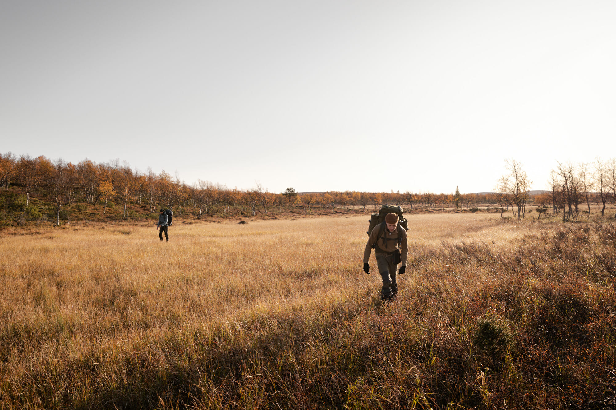 Traversée de Marais en Laponie finlandaise