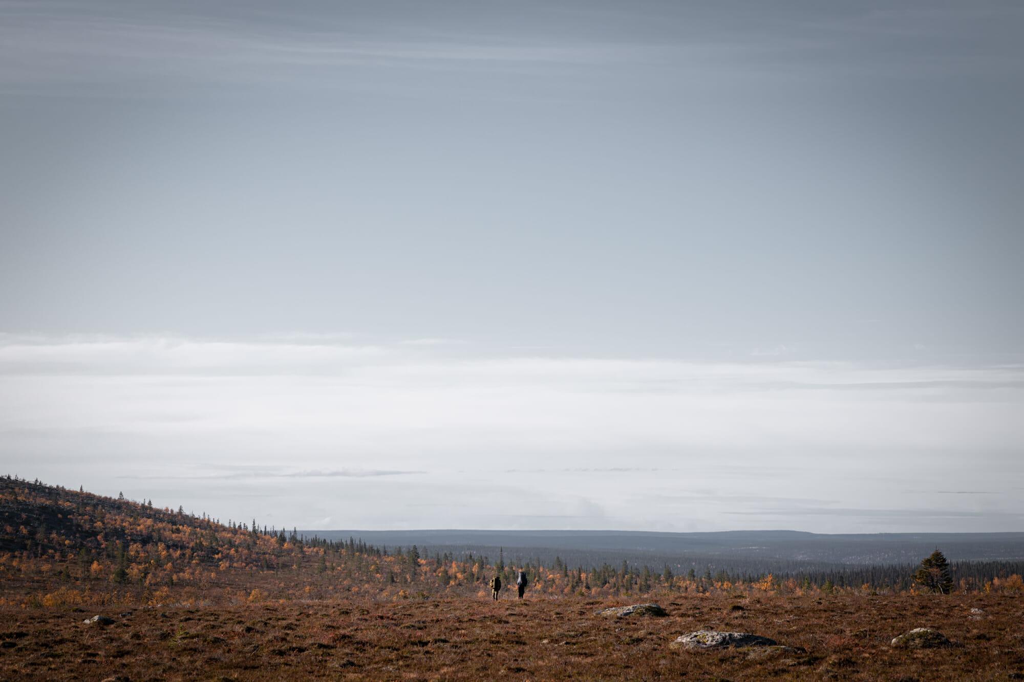 Plateau Hammastunturi Finlande