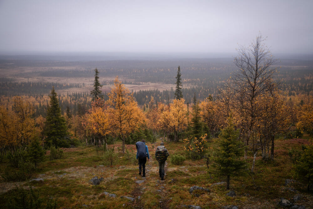 Randonneurs en Laponie finlandaise