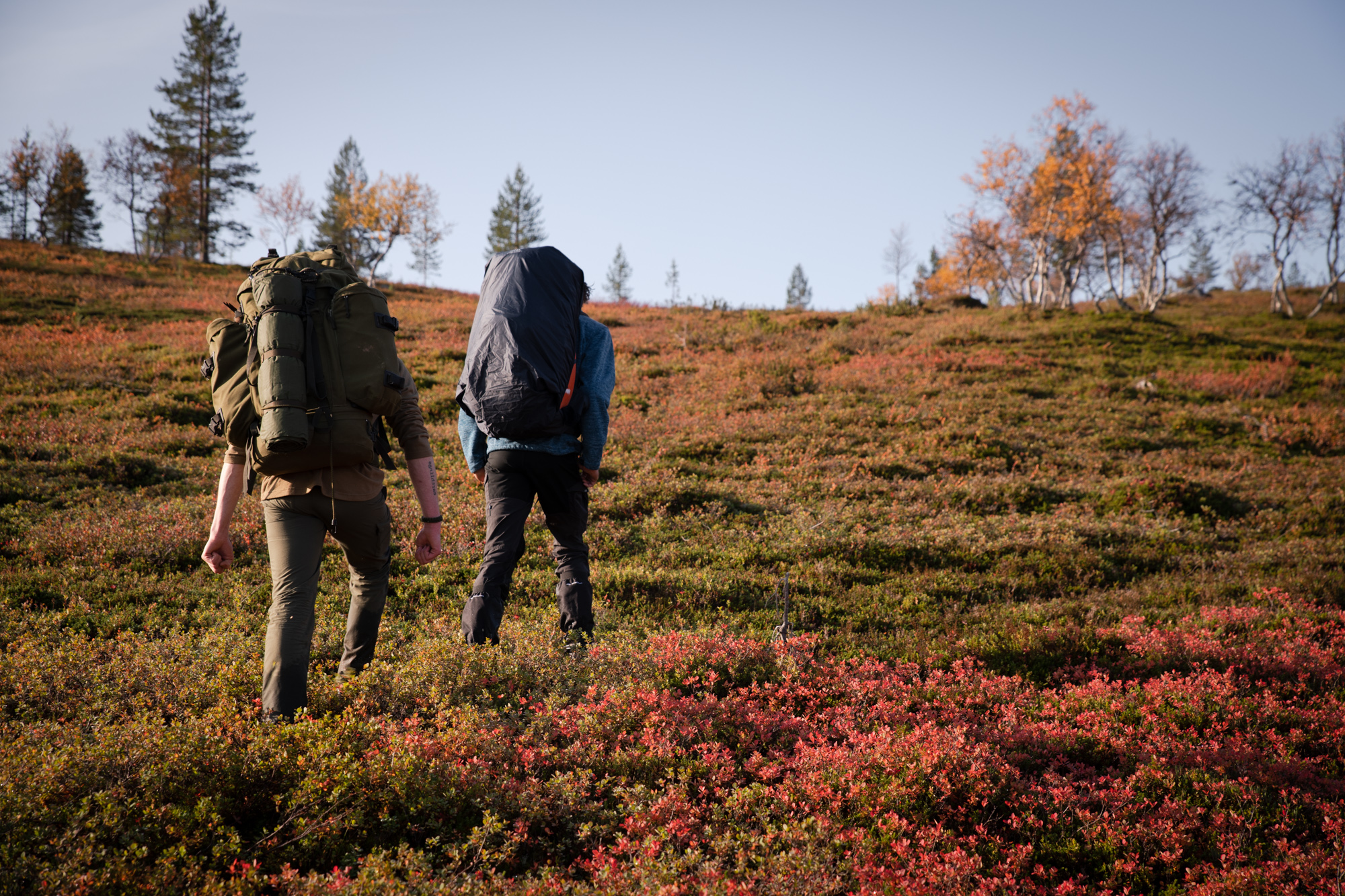 Deux randonneurs dans la zone sauvage de Hammastunturi en Laponie finlandaise