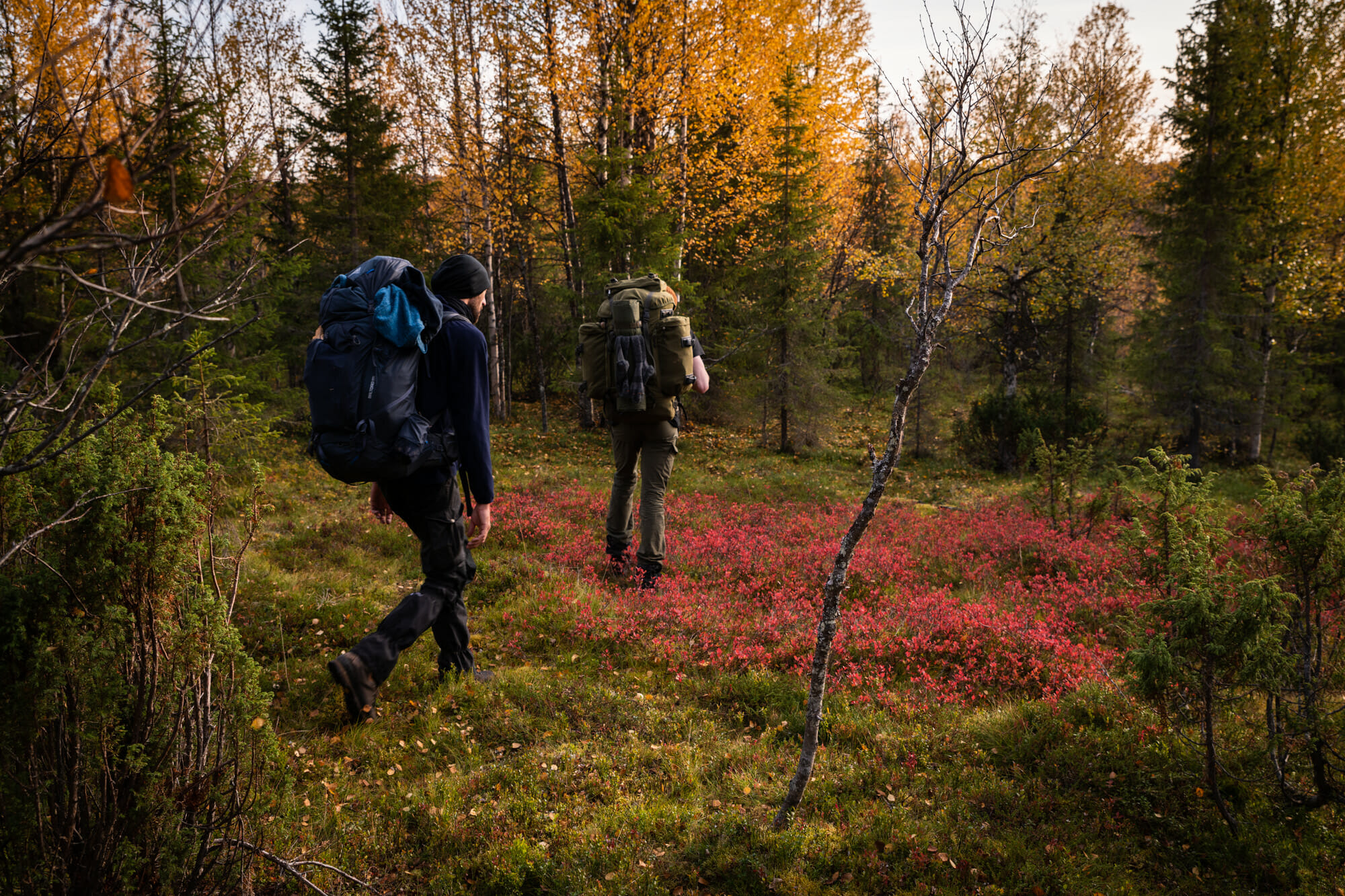 Deux randonneurs en Laponie finlandaise