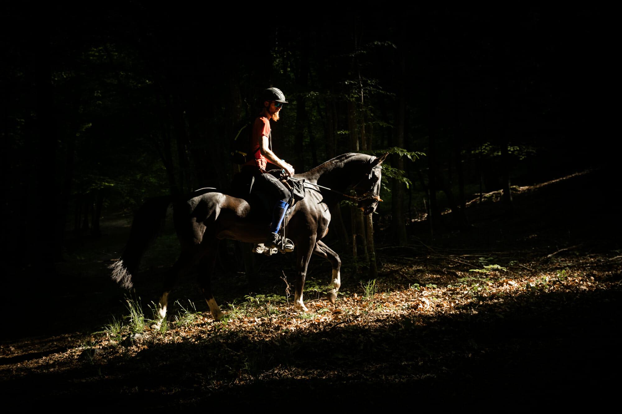 A cheval en Grande forêt de Saint-Hubert