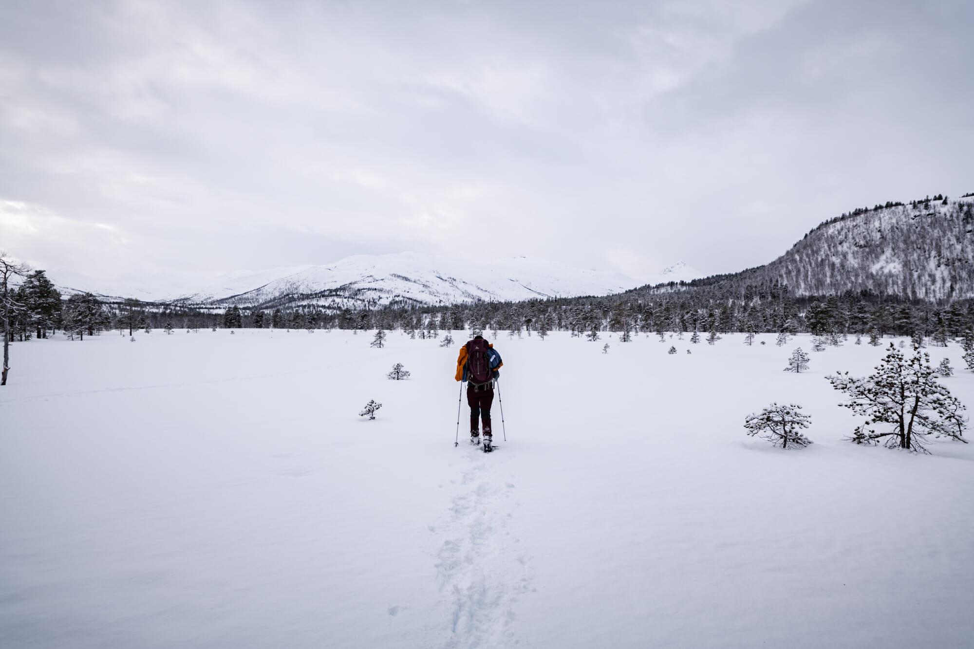 Randonneuse sur l'île de Senja en Norvège