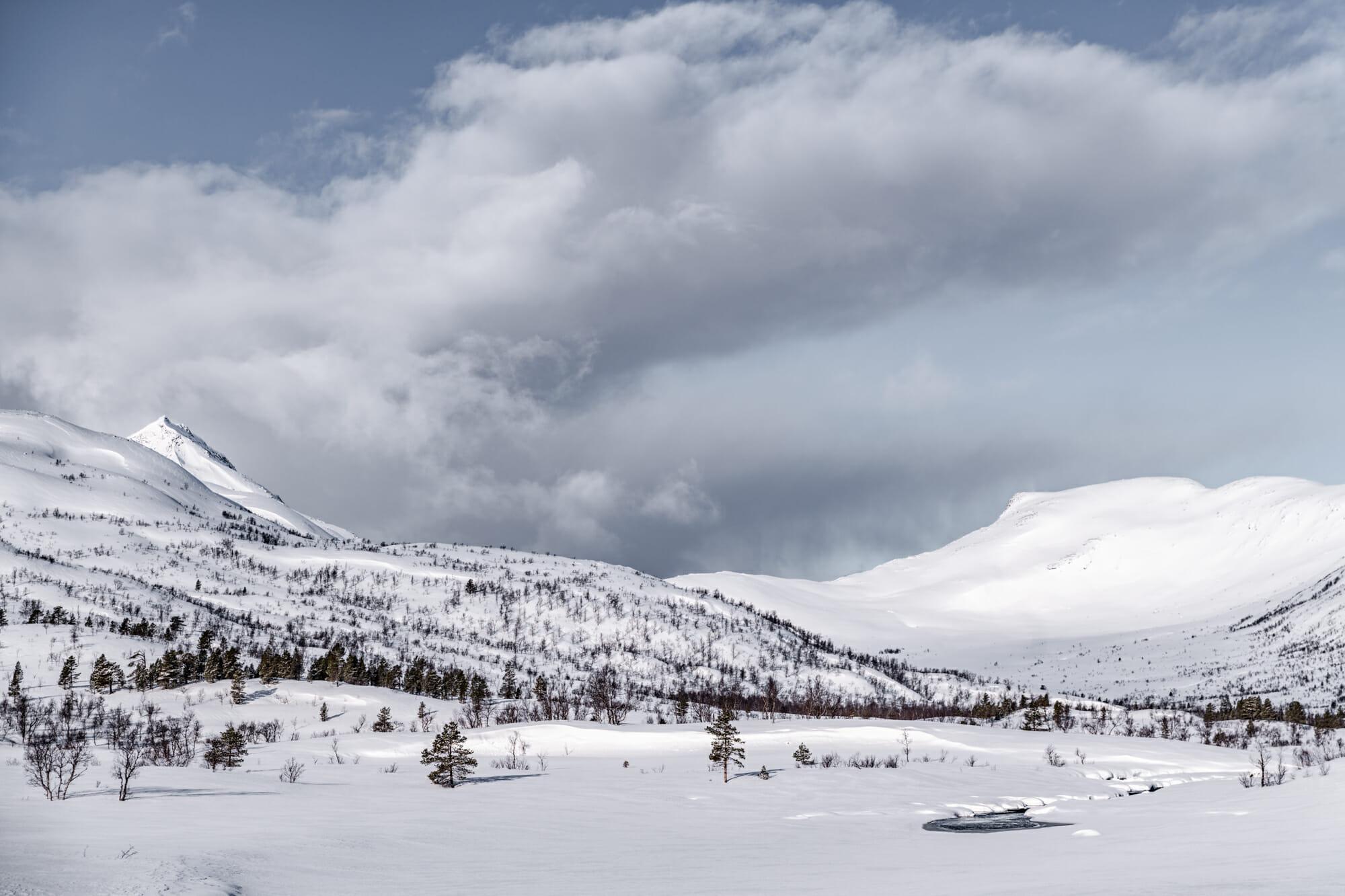 Parc national d'Ånderdalen
