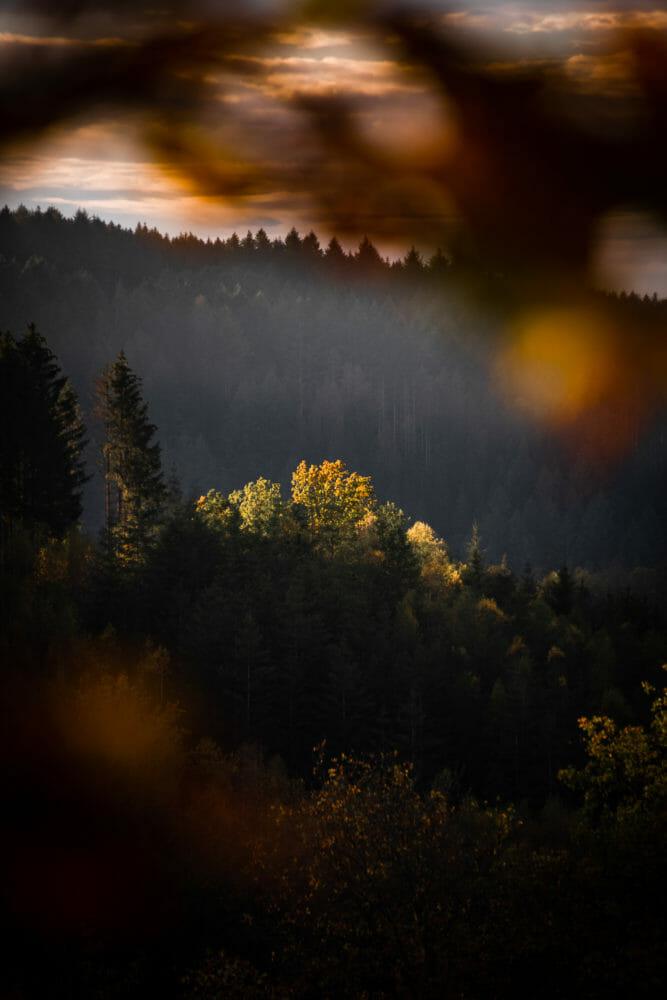 Vallée de l'Ourthe au crépuscule