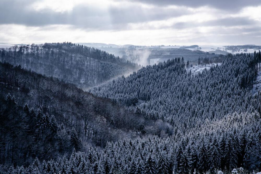 Paysage d'Ardenne