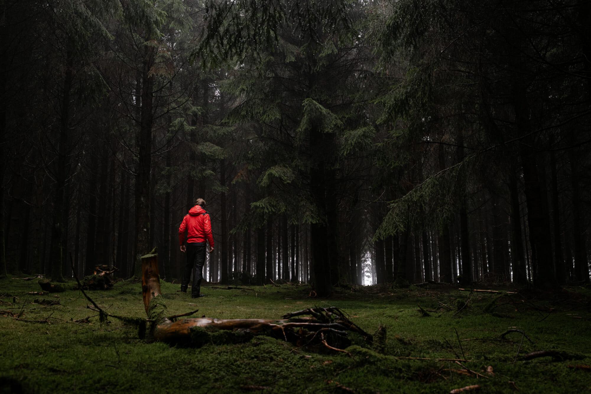 Randonneur en Forêt d'Anlier